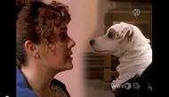 Orgullo y Prejuicio en versión canina:Wishbone