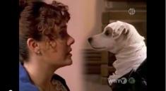 Darcy Wishbone y Lizzy