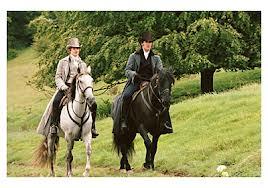 Darcy y Bingley