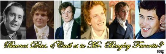 Bingley todos