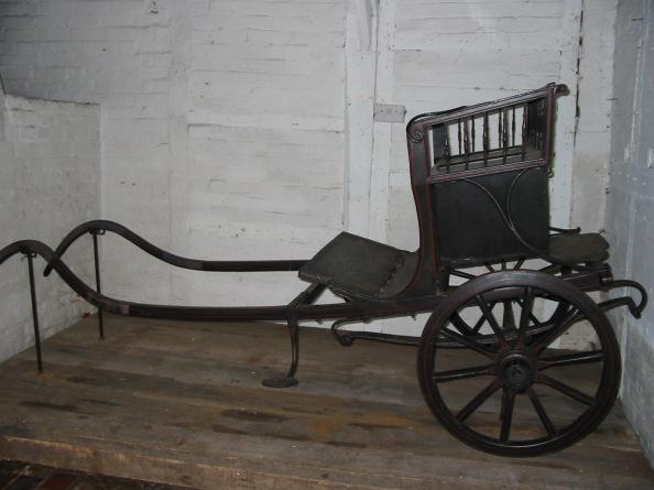 donkey carriage